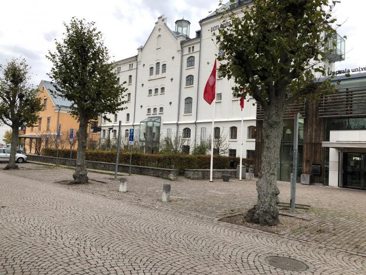 Visby Högskola/Maltfabriken